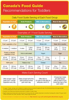 canada food guide meat servings per day